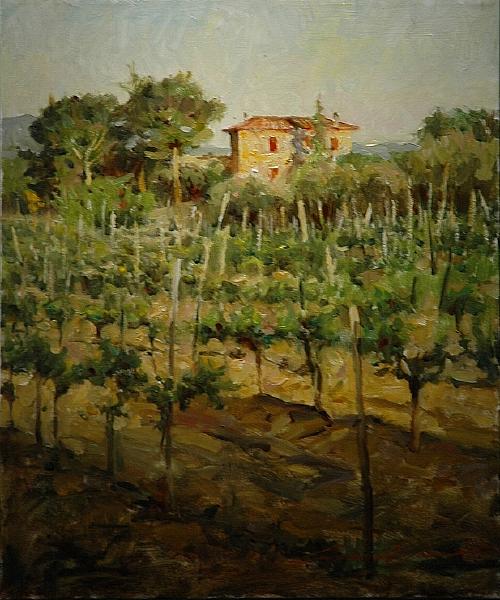 wren-leonard-tuscan-vineyard